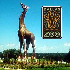 dallas-zoo-coupons